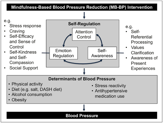 Mindfulness-Based Blood Pressure Reduction (MB-BP) Intervention
