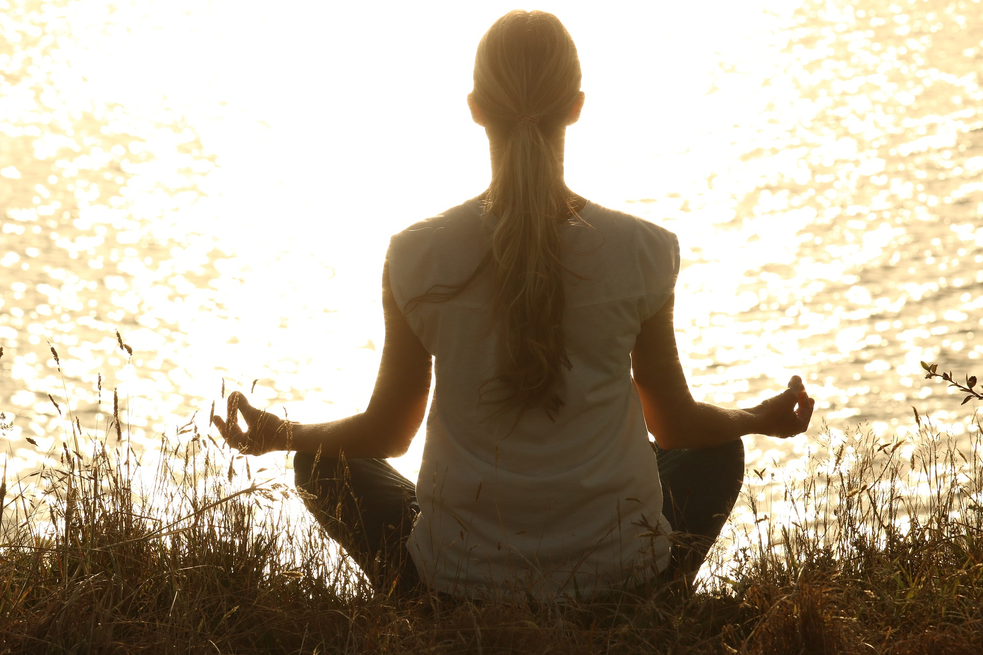 wellable meditation boosts employee wellness